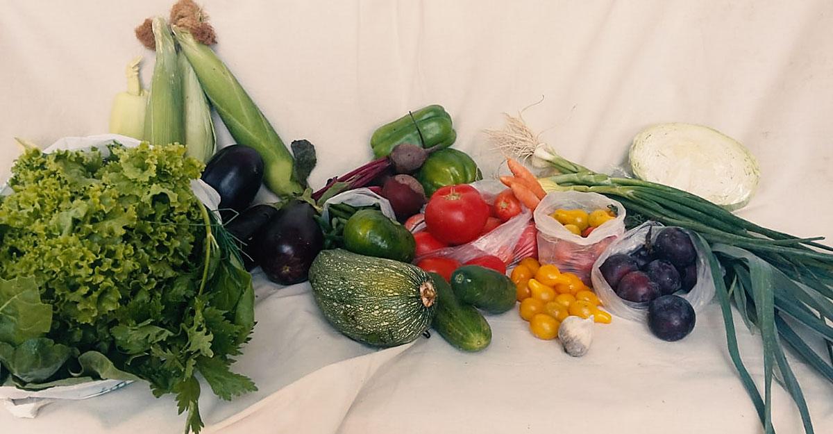 Alimentos Vitales y Nutritivos